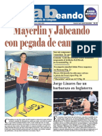 Periodico Jabeando Nº 12