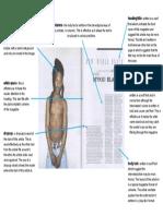 clash magazine double page spread analysis