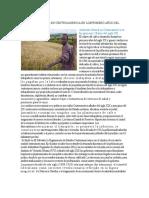 Ambiente Laboral en Centroamercia en Losprimero Años Del Siglo Xx