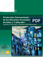 proteccion-internacional-desc-2008.pdf