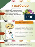 Riesgo Biológico