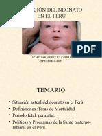 Situacion de Salud RN Perú