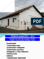 Intes.del.Grueso,Gland.anex.2016