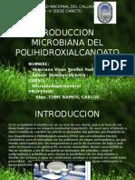 Produccion Microbiana Del Polihidroxialcanoato