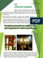 Portafolio Construcciones Guadua Colombia5