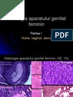 Curs 6 Patologia aparatului genital feminin I.ppt