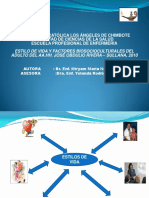 Diapositivas de Sustentacion (1)