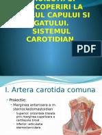 Proiectii-vasculare
