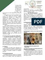 Pulmón Artificial