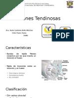 Lesiones tendinosas