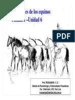 Unidad 5 y 6 Nemátodes de Los Equinos-Ascaris
