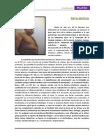 actualizacionplaton.pdf