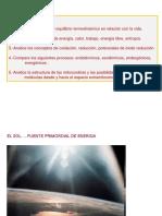 10. Bioenergética 1