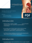 Fístulas intestinales