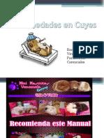 Enfermedades-en-COBAYOS.pdf