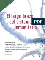 El Largo Brazo Del Sistema Inmune