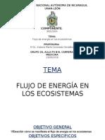 Flujo de Energía en Los Ecosistemas