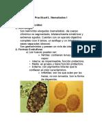 Geohelmintos via Oral