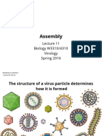 Assembly Viruses