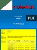 1. K Org 1 (Alkana)