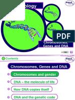 KS4 Chromosomes Genes DNA Boardworks 1yu7k3x
