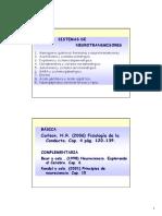 TEMA 8. Sitemas de Neurotransmisores