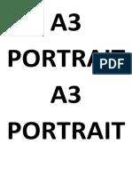 A3 PORTRAIT.pdf