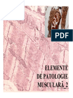 Patologia Tesutului Muscular