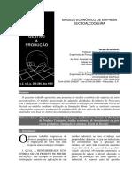 modelo econômico de empresa sucroalcooleira.pdf