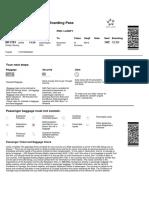 c i Print PDF Boarding Pass View