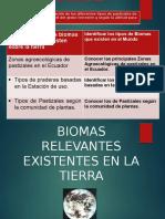 Biomas Relevantes Existentes (1) (1) (1)
