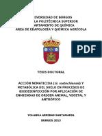 Arribas_Santamaría.pdf