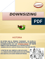 Downzizin