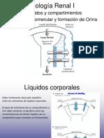 Clase v-2a - Fisiologia Renal i - Compartimeintos y Liquidos Del Organismo - Formacion de Orina - Flujo Sanguineo Renal y Manejo