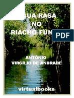 ÁGUA RASA NO RIACHO FUNDO.pdf