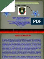 El Arresto Ciudadano.ppt