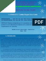 Presentacion Ade Anteproyecto