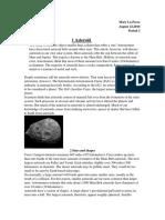 perez marylu asteroid