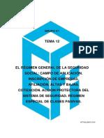 117856-C1 TEMA 12.pdf