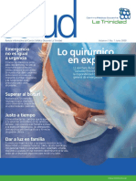 LineasdeSalud_2009.01.pdf