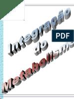 00739 - Integra‡Æo do Metabolismo.pdf