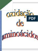 00768 - Oxida‡Æo de Aminocidos.pdf