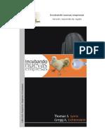 Incubando nuevas empresas. Libro resumid.pdf