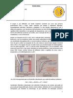 (1) Fisiologia_9Mar10_Fisiologia_do_Sangue[Anotada]_Tema_9.pdf