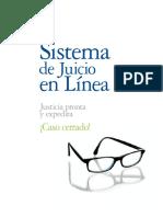 Sistema de Juicio en Linea - Deloitte