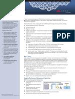 ARIBA SPM.pdf