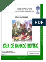 CRIA DE GANADO BOVINO.pdf