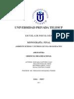 Trabajo final Ambiente Interno y Externo de una Organización (1).doc
