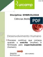 Aula 2. Introdução a Embriologia Humana