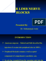 Lower Limb Nerve Blocks_Dr. Asim